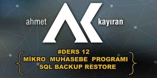 Mikro Muhasebe Programı Sql Backup Restore